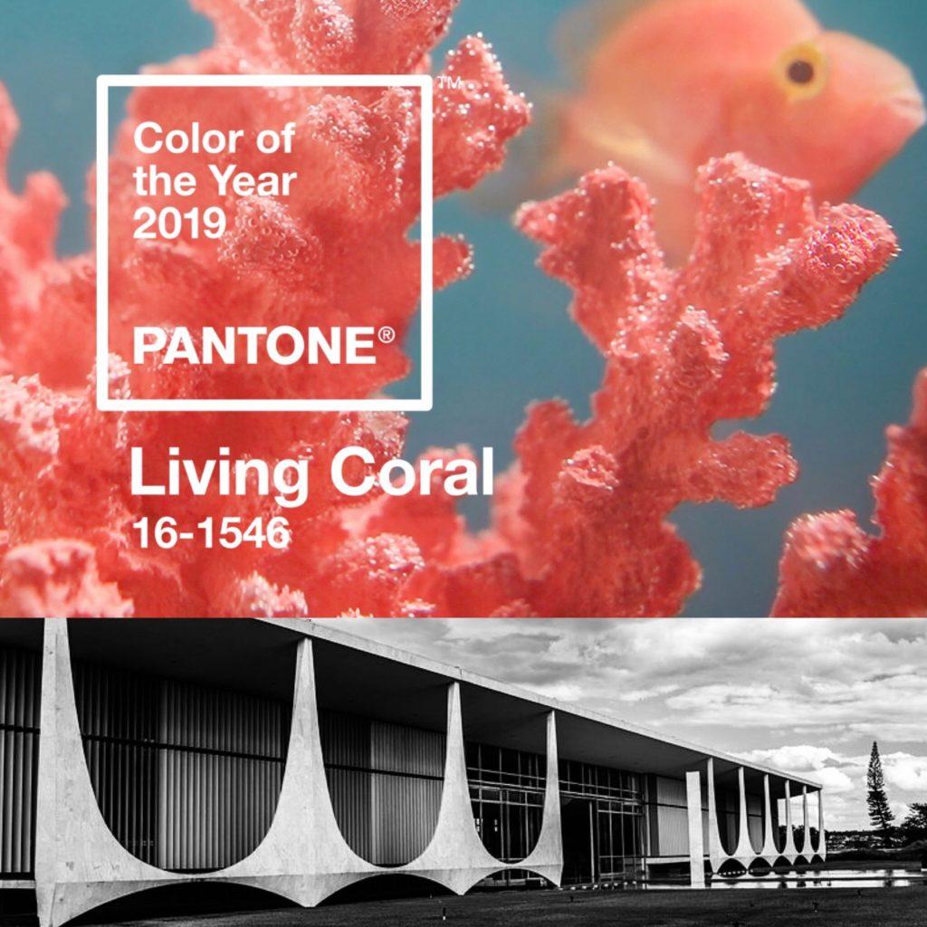 Pantone Living Coral Brasilia inspired